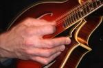 Acoustic Revelry: Cooper's Glen Music Festival returns to Kalamazoo this weekend. (Photo/Peg Alofs Becker)